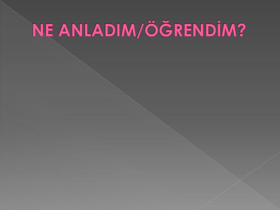 NE ANLADIM/ÖĞRENDİM