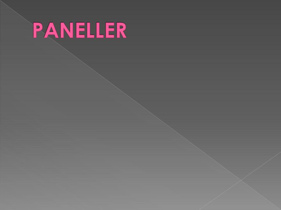 PANELLER