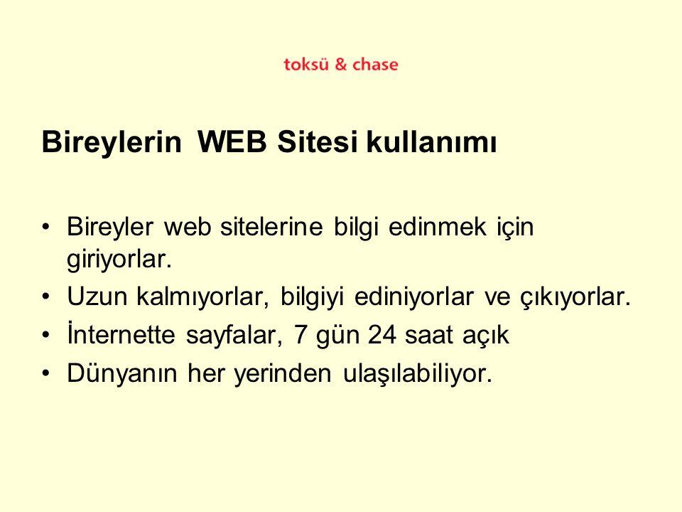 Bireylerin WEB Sitesi kullanımı