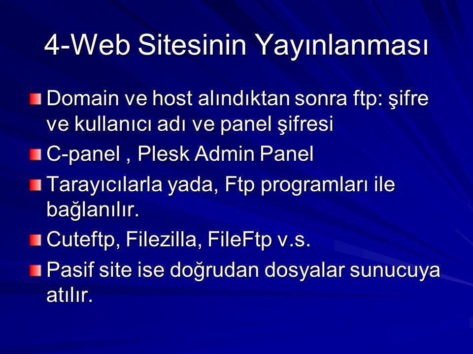 4-Web Sitesinin Yayınlanması