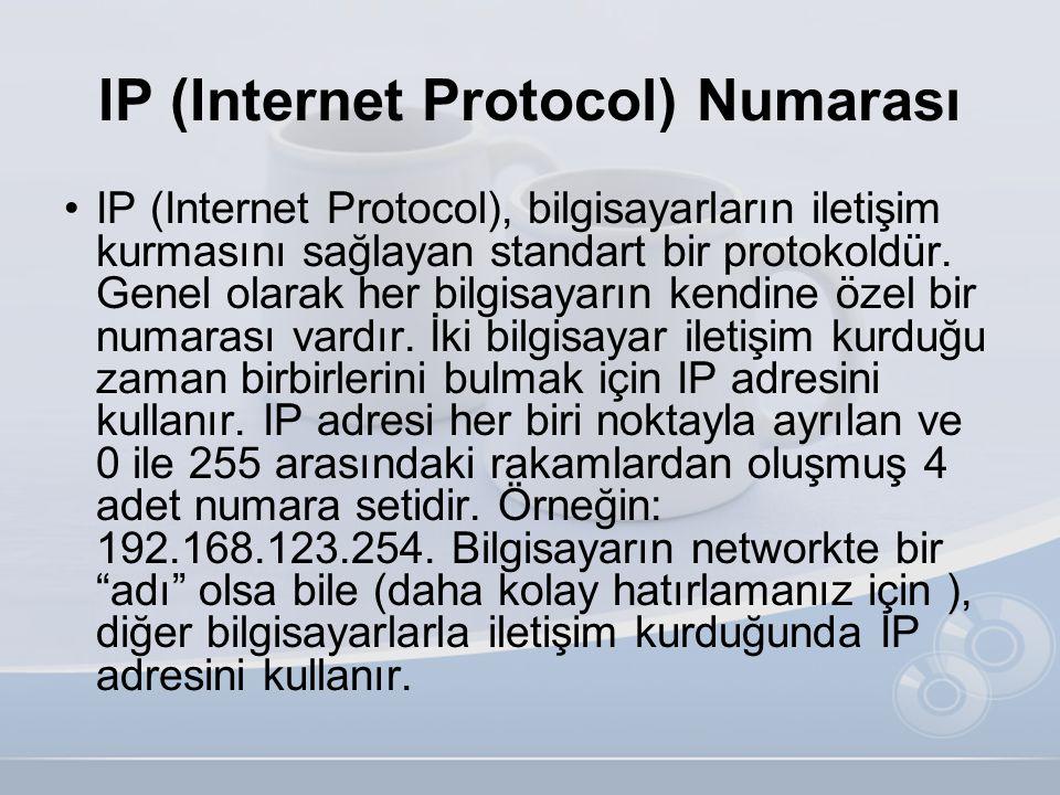 IP (Internet Protocol) Numarası