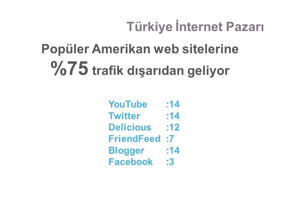 Popüler Amerikan web sitelerine %75 trafik dışarıdan geliyor