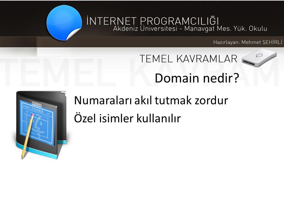 Domain nedir Numaraları akıl tutmak zordur Özel isimler kullanılır