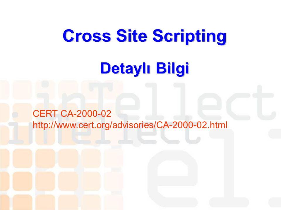Cross Site Scripting Detaylı Bilgi