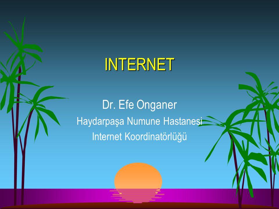 Dr. Efe Onganer Haydarpaşa Numune Hastanesi Internet Koordinatörlüğü