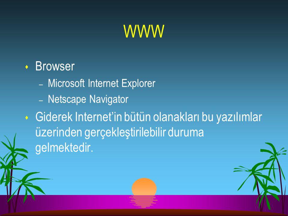 WWW Browser. Microsoft Internet Explorer. Netscape Navigator.