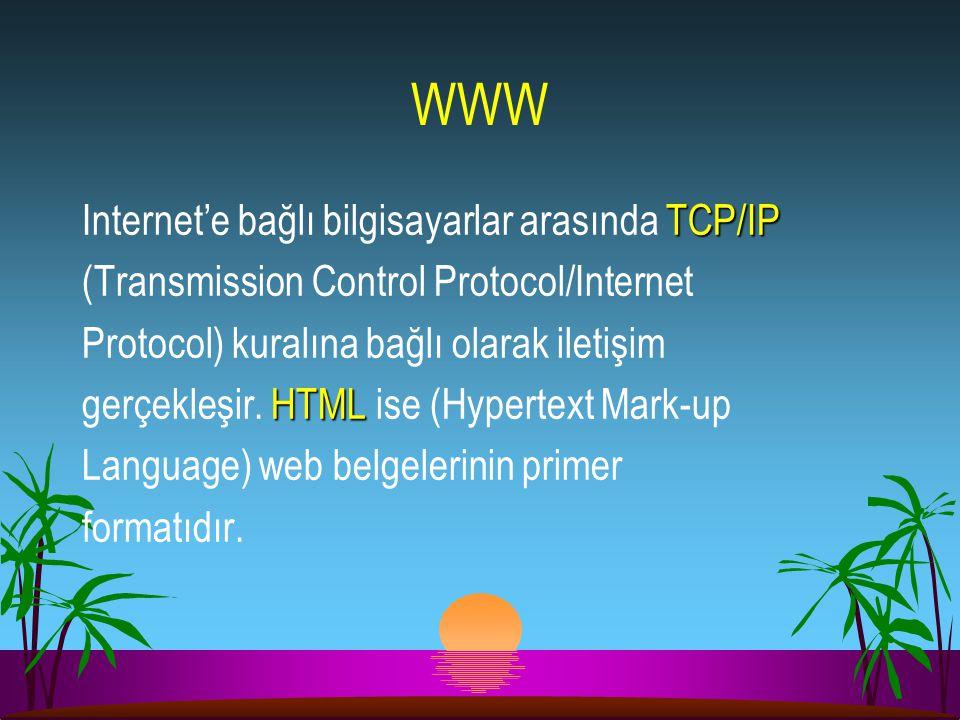 WWW Internet'e bağlı bilgisayarlar arasında TCP/IP