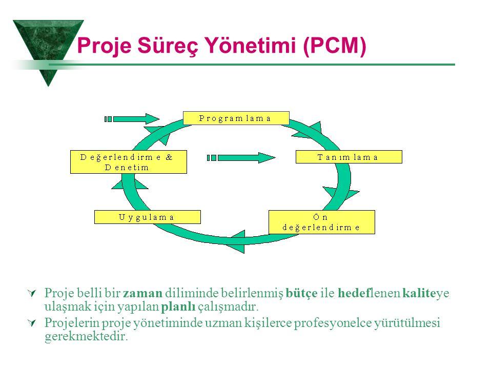 Proje Süreç Yönetimi (PCM)