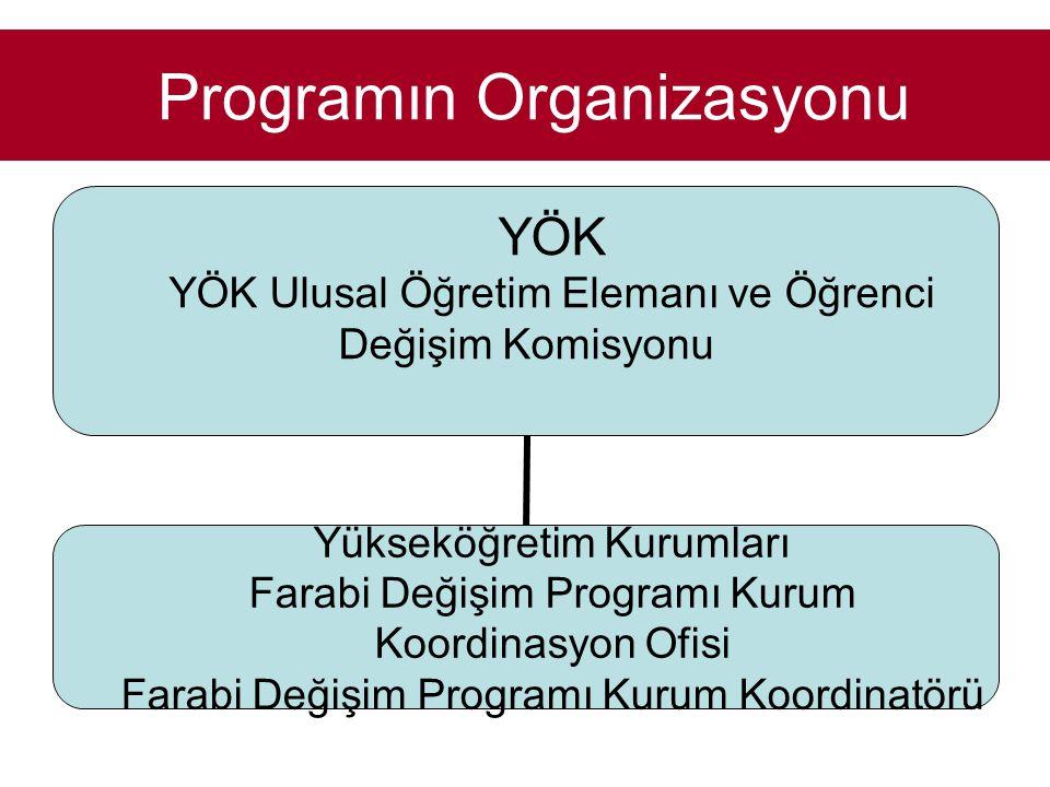 Programın Organizasyonu