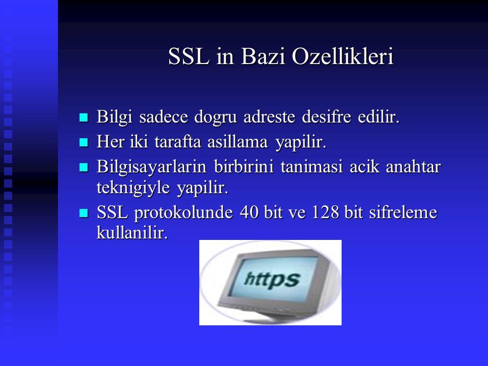 SSL in Bazi Ozellikleri