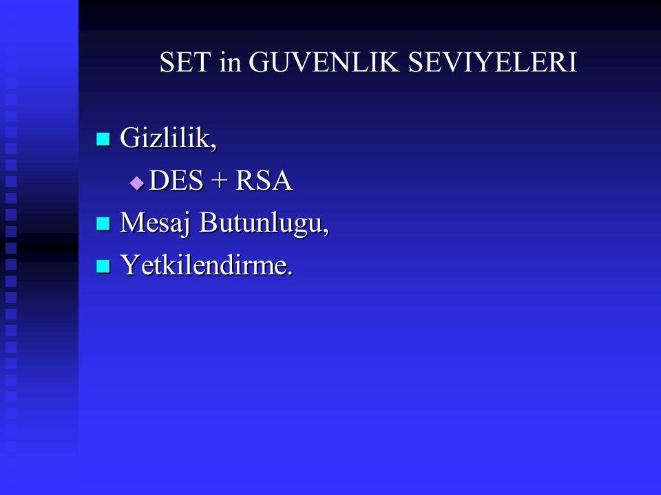 SET in GUVENLIK SEVIYELERI