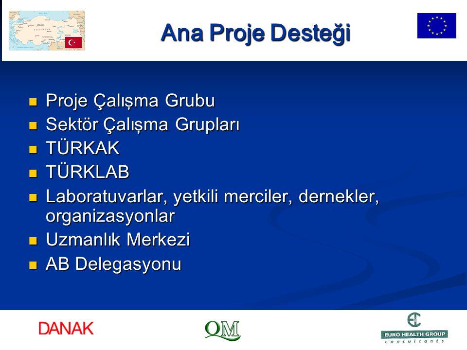 Ana Proje Desteği Proje Çalışma Grubu Sektör Çalışma Grupları TÜRKAK