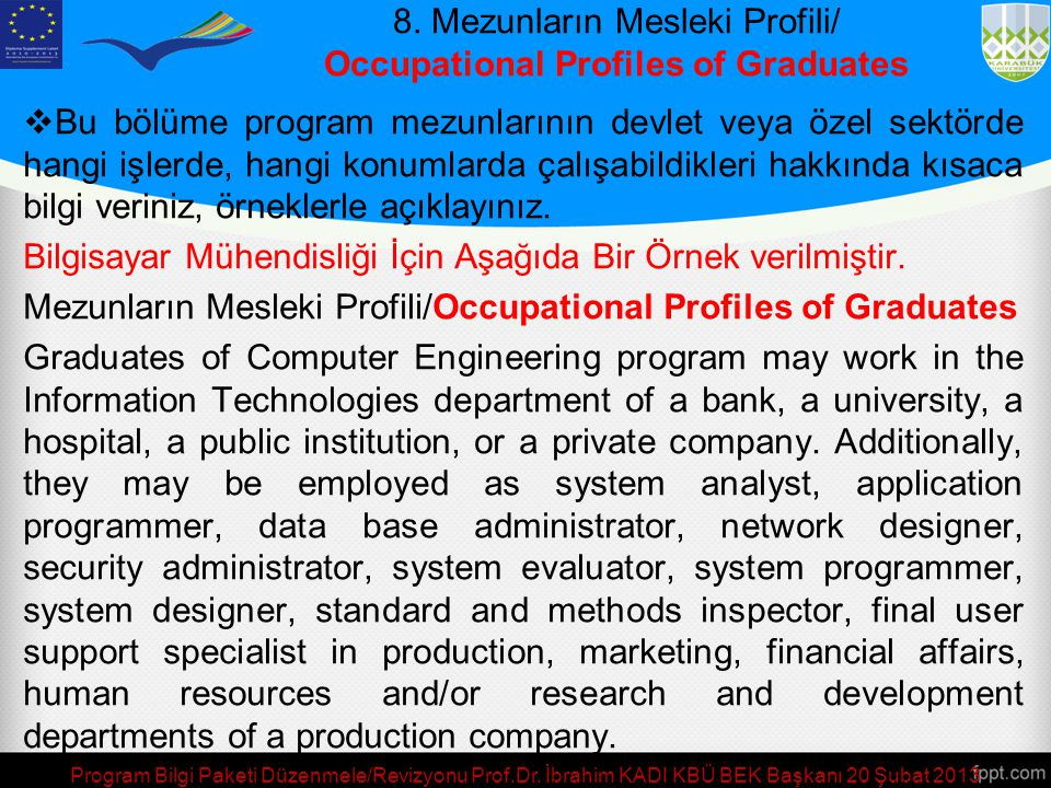 8. Mezunların Mesleki Profili/ Occupational Profiles of Graduates