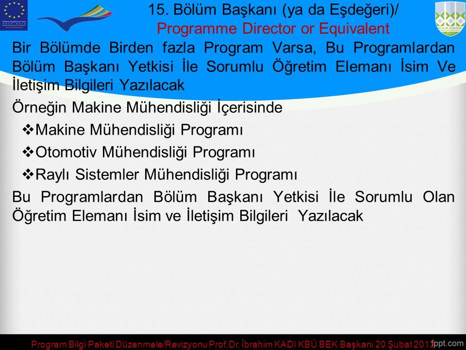 15. Bölüm Başkanı (ya da Eşdeğeri)/ Programme Director or Equivalent