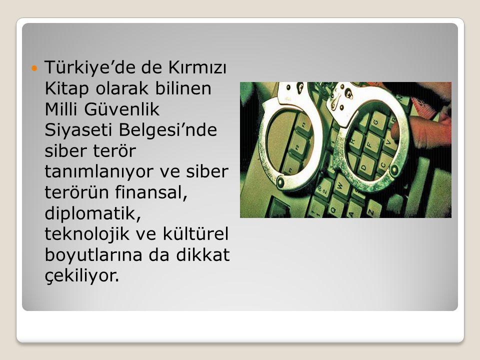 Türkiye'de de Kırmızı Kitap olarak bilinen Milli Güvenlik Siyaseti Belgesi'nde siber terör tanımlanıyor ve siber terörün finansal, diplomatik, teknolojik ve kültürel boyutlarına da dikkat çekiliyor.