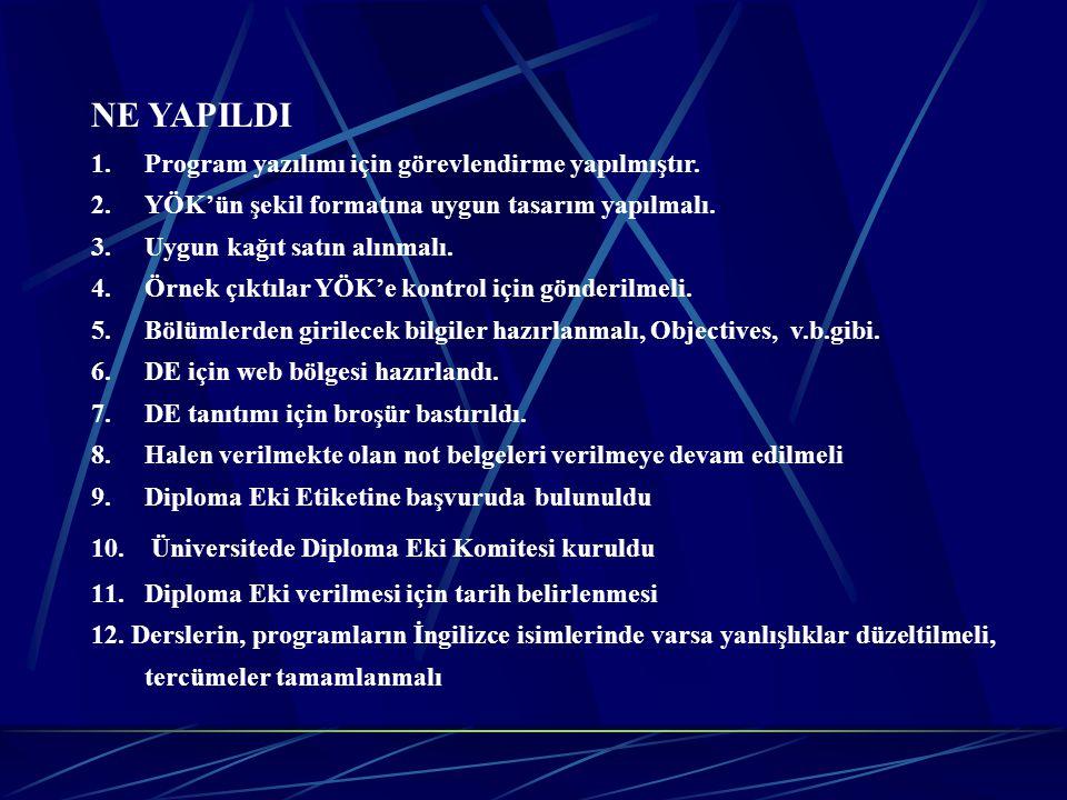 NE YAPILDI Program yazılımı için görevlendirme yapılmıştır.