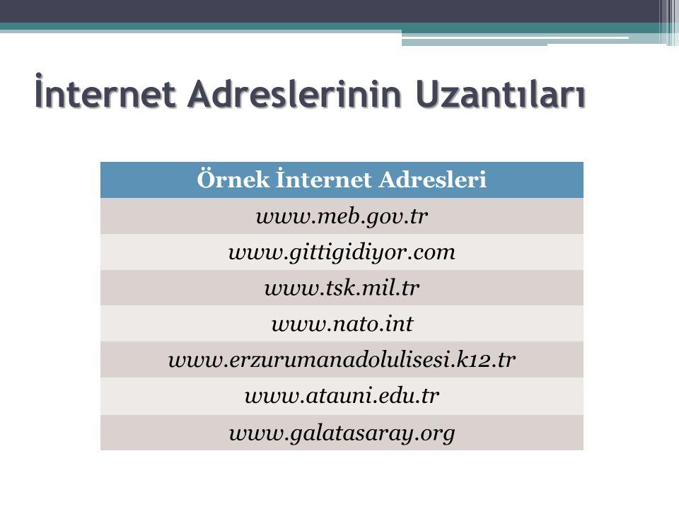 İnternet Adreslerinin Uzantıları