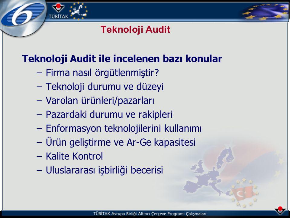 Teknoloji Audit Teknoloji Audit ile incelenen bazı konular. Firma nasıl örgütlenmiştir Teknoloji durumu ve düzeyi.