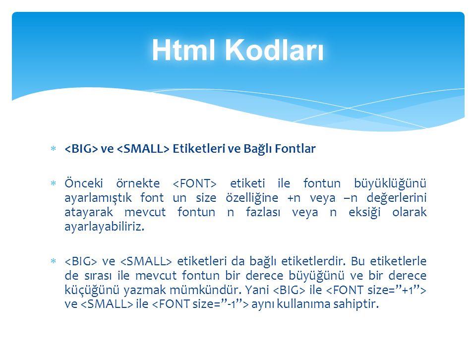 Html Kodları <BIG> ve <SMALL> Etiketleri ve Bağlı Fontlar