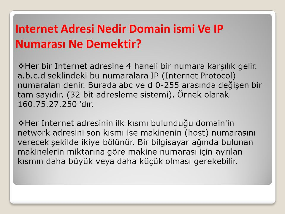 Internet Adresi Nedir Domain ismi Ve IP Numarası Ne Demektir