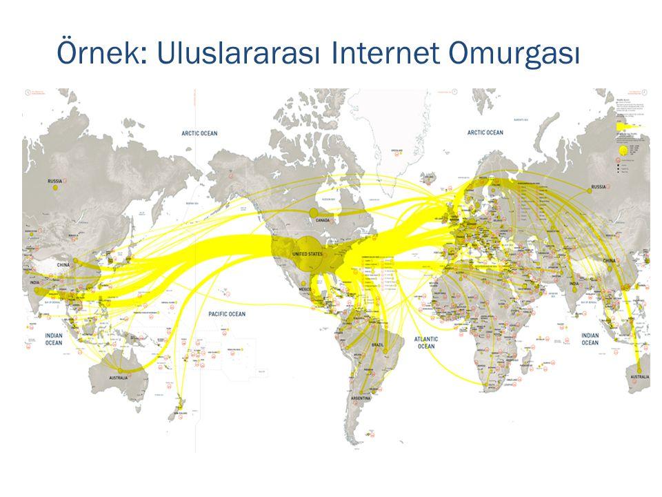 Örnek: Uluslararası Internet Omurgası