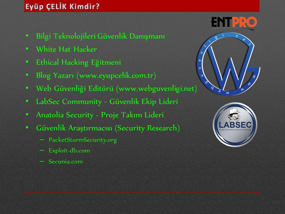 Bilgi Teknolojileri Güvenlik Danışmanı White Hat Hacker