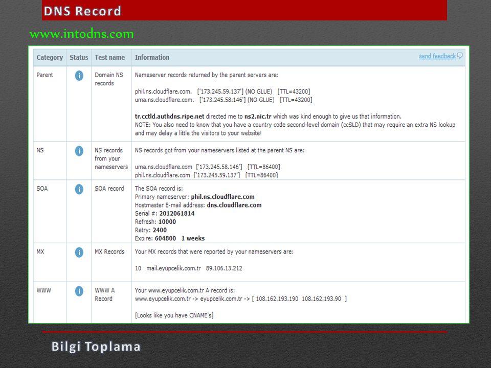 DNS Record www.intodns.com Bilgi Toplama