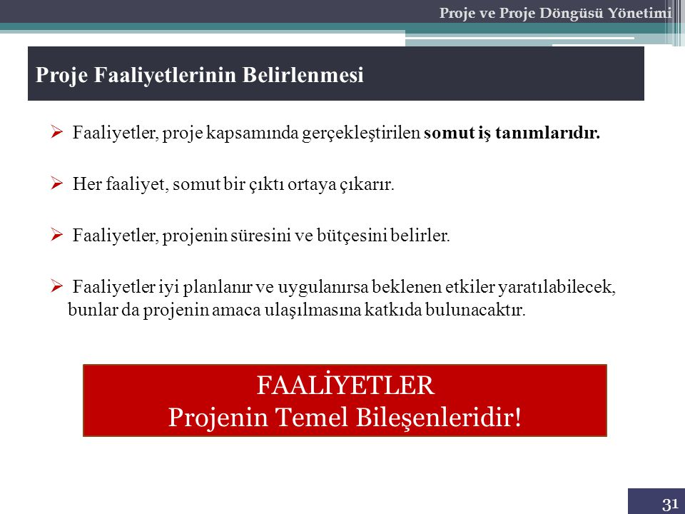 Proje ve Proje Döngüsü Yönetimi