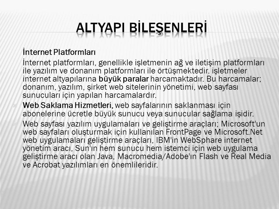 ALTYAPI BİLEŞENLERİ İnternet Platformları