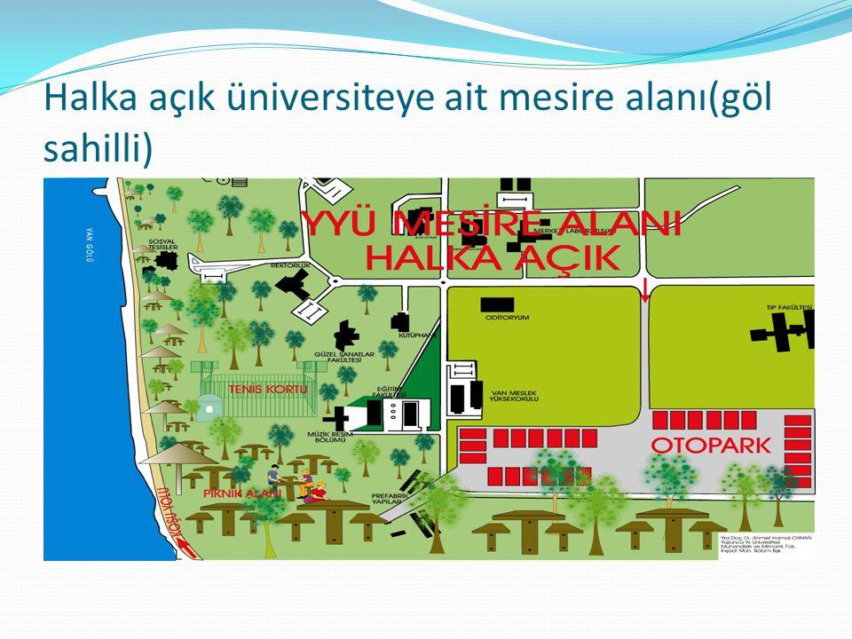 Halka açık üniversiteye ait mesire alanı(göl sahilli)