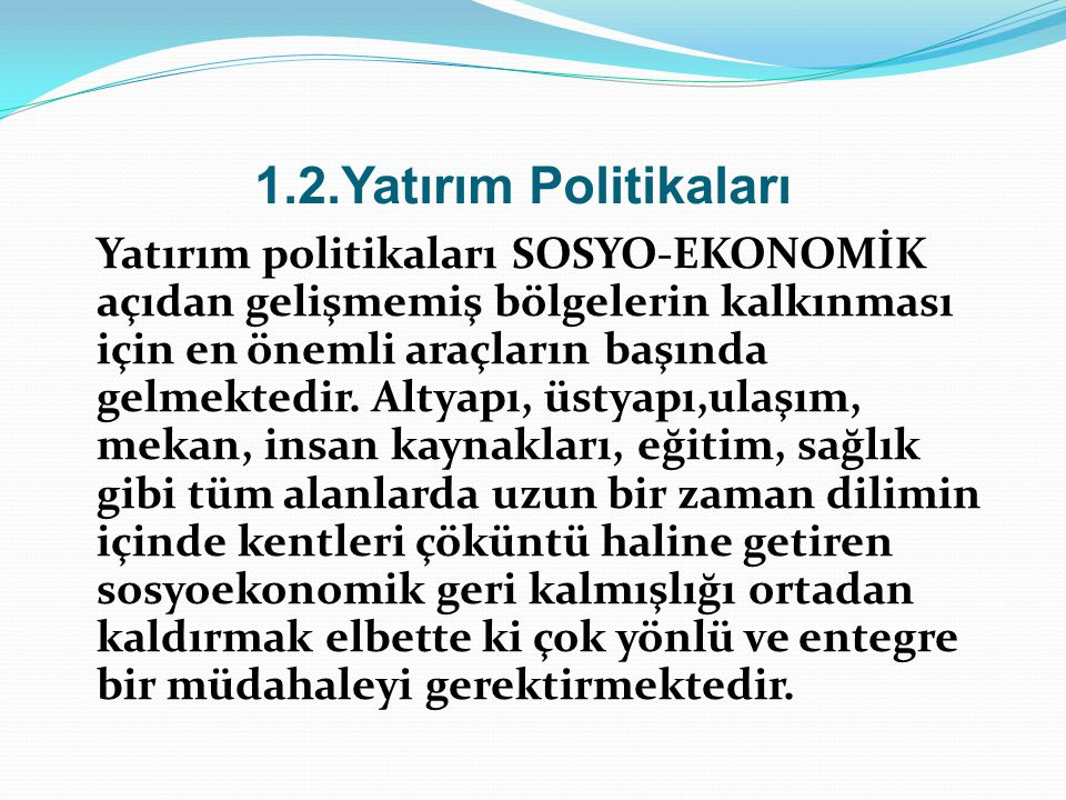 1.2.Yatırım Politikaları