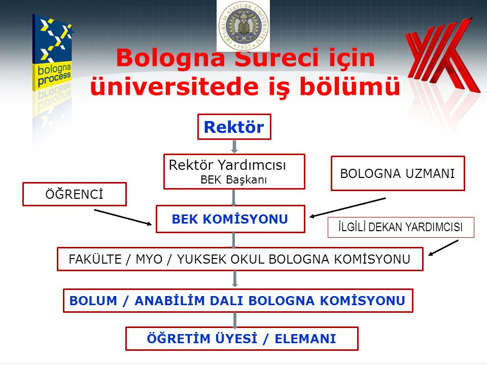 Bologna Süreci için üniversitede iş bölümü