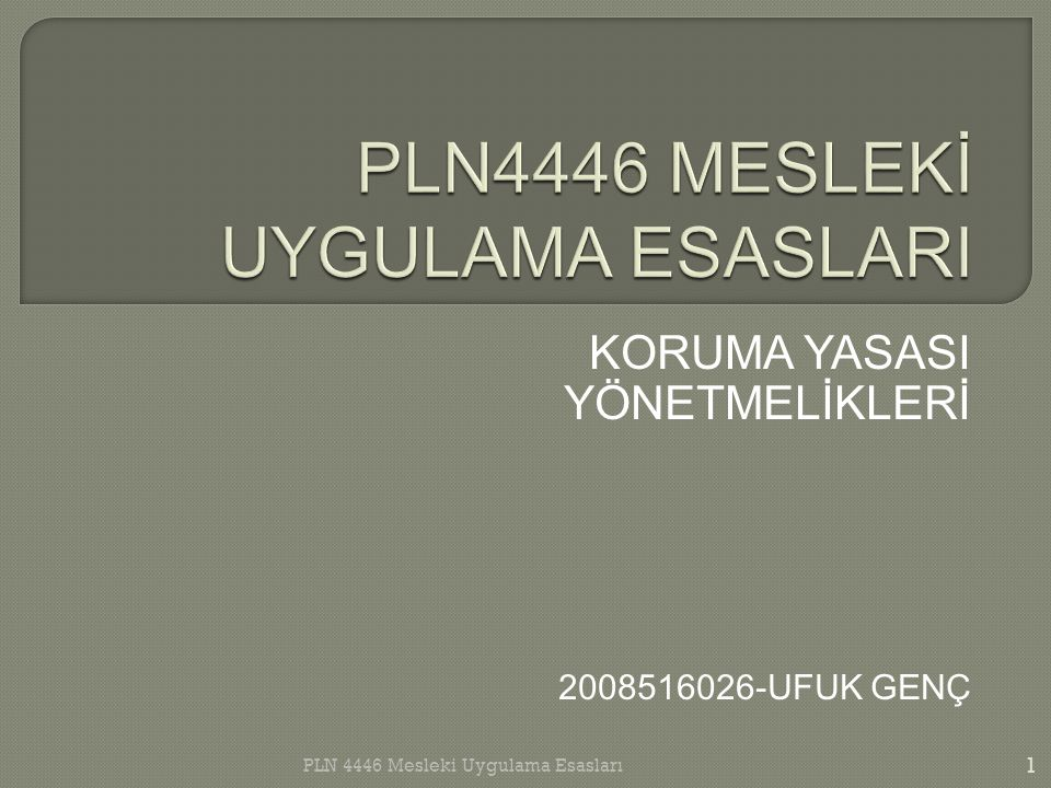 PLN4446 MESLEKİ UYGULAMA ESASLARI