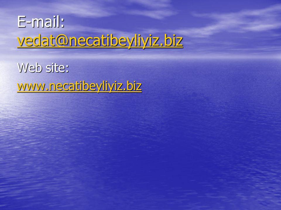 E-mail: vedat@necatibeyliyiz.biz