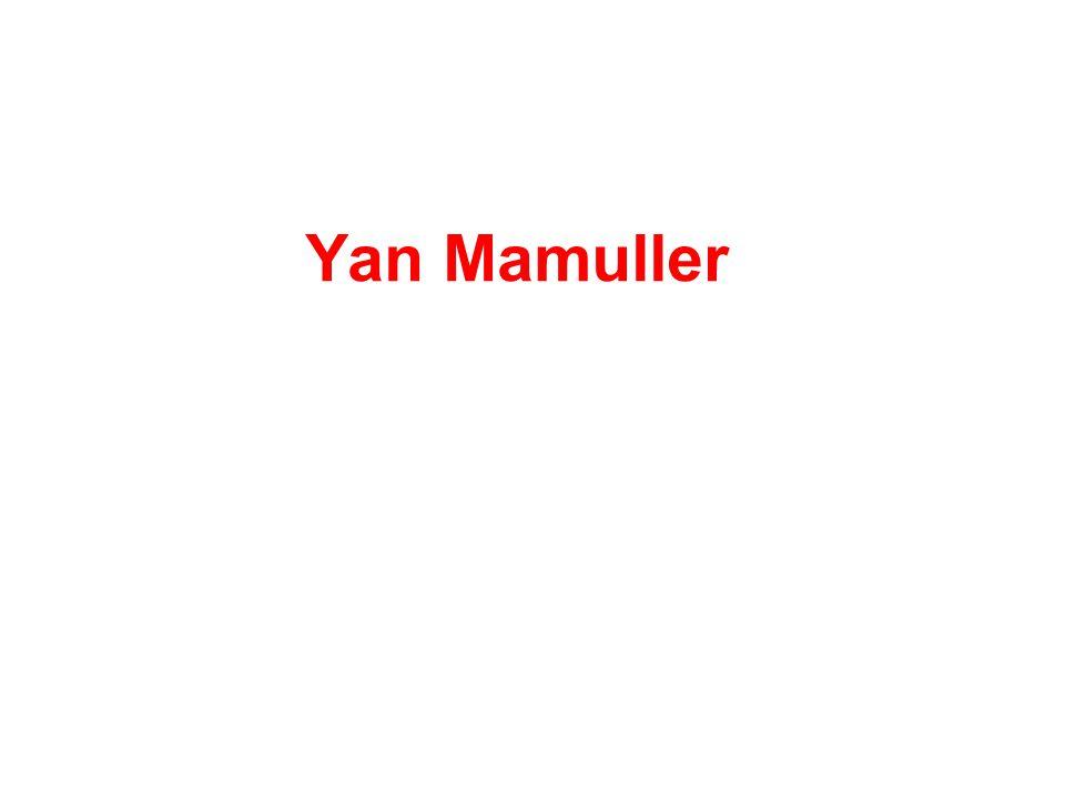 Yan Mamuller