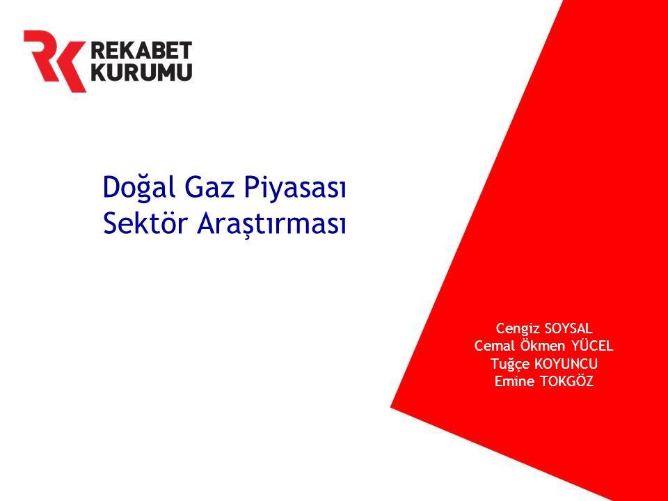 Doğal Gaz Piyasası Sektör Araştırması