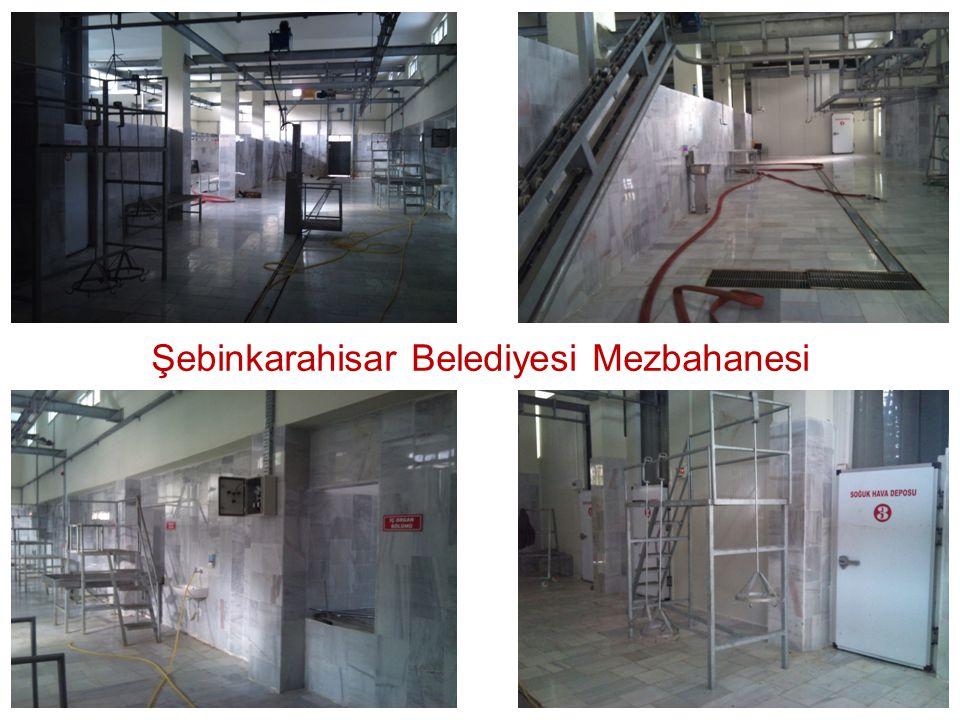 Şebinkarahisar Belediyesi Mezbahanesi