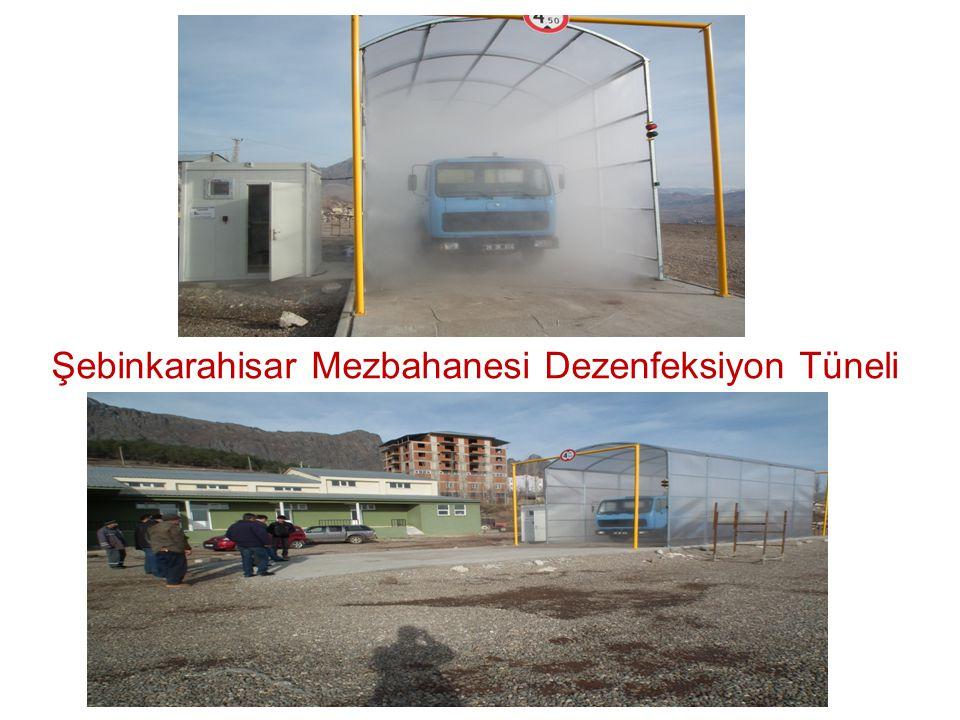 Şebinkarahisar Mezbahanesi Dezenfeksiyon Tüneli