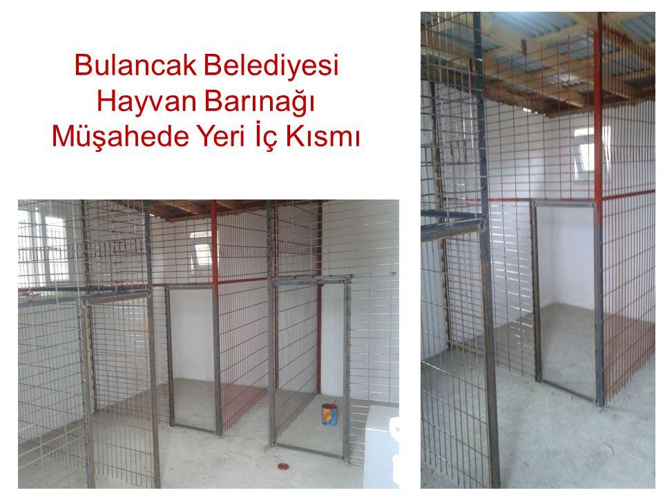 Bulancak Belediyesi Hayvan Barınağı Müşahede Yeri İç Kısmı