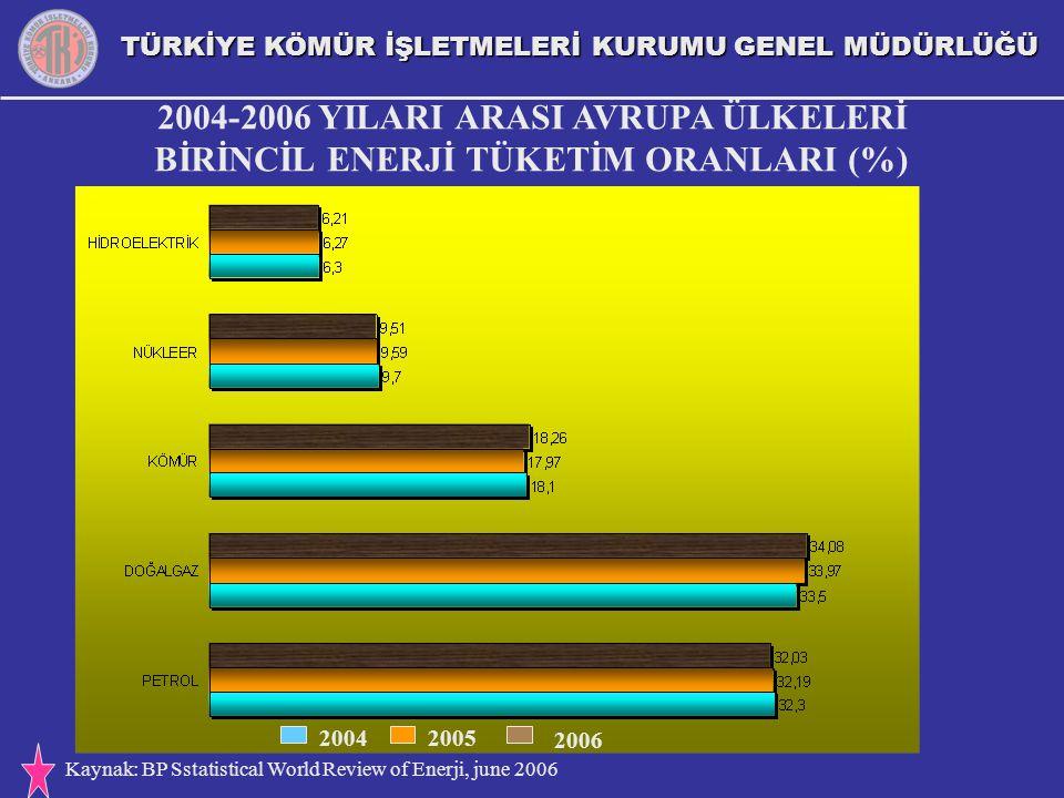 2004-2006 YILARI ARASI AVRUPA ÜLKELERİ BİRİNCİL ENERJİ TÜKETİM ORANLARI (%)