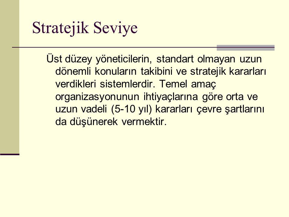 Stratejik Seviye