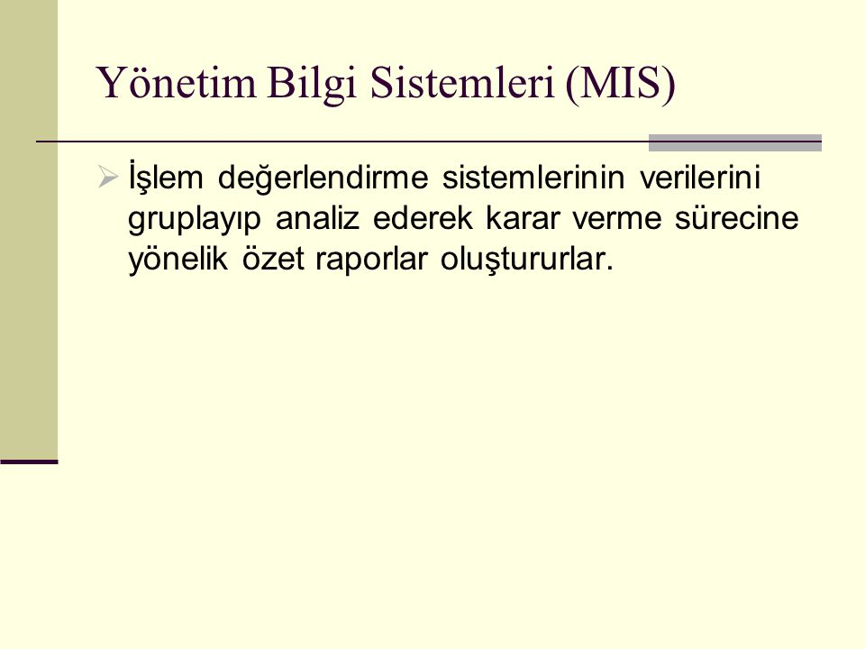 Yönetim Bilgi Sistemleri (MIS)