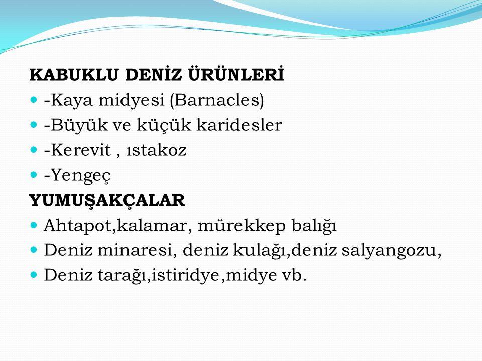 KABUKLU DENİZ ÜRÜNLERİ