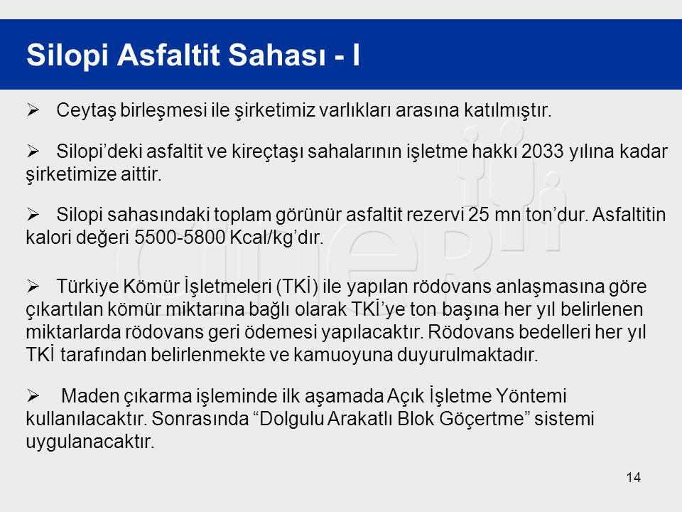 Silopi Asfaltit Sahası - I