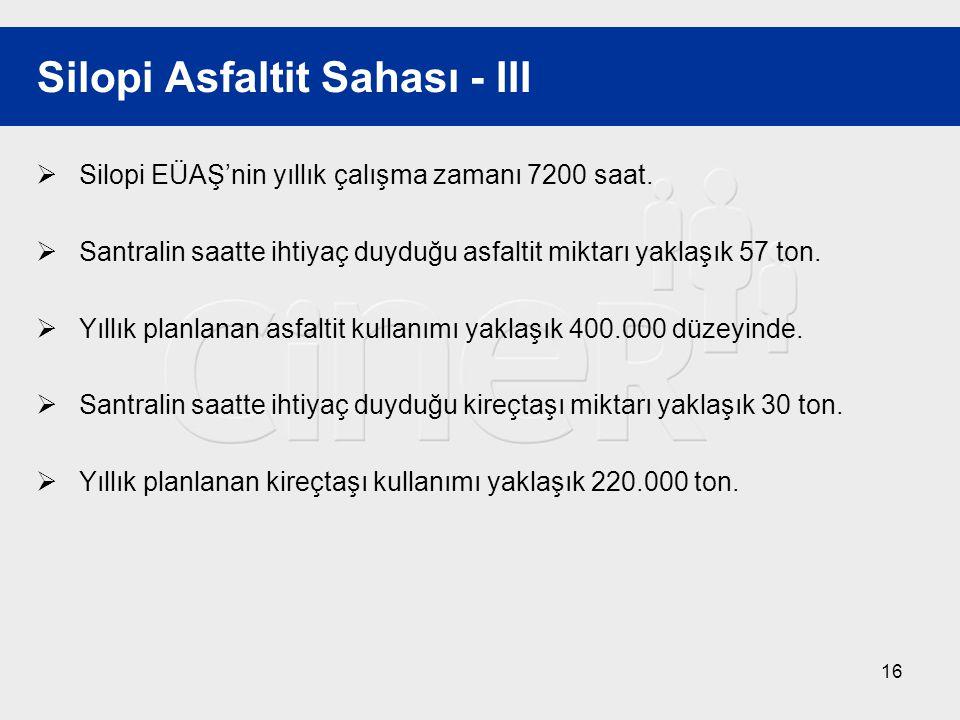 Silopi Asfaltit Sahası - III