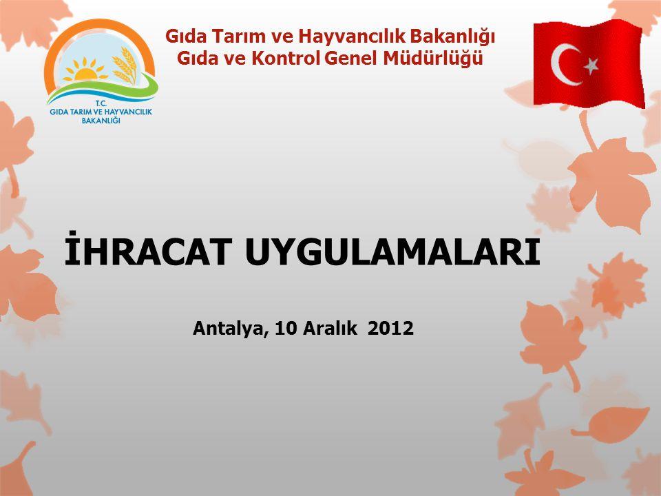 İHRACAT UYGULAMALARI Antalya, 10 Aralık 2012