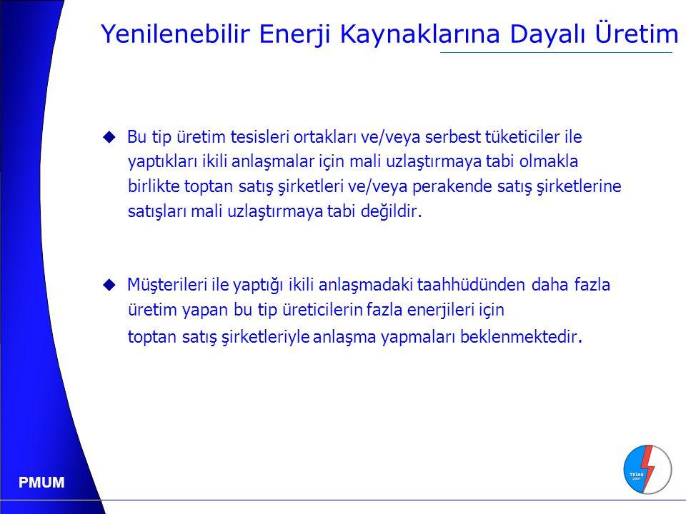Yenilenebilir Enerji Kaynaklarına Dayalı Üretim