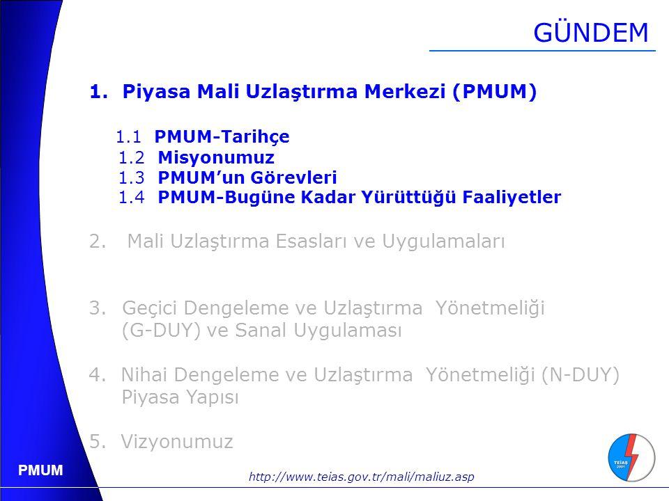 GÜNDEM Piyasa Mali Uzlaştırma Merkezi (PMUM) 1.1 PMUM-Tarihçe
