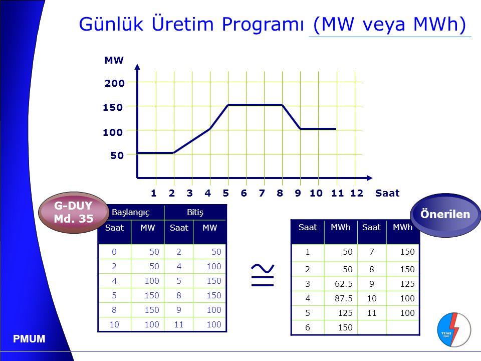 Günlük Üretim Programı (MW veya MWh)