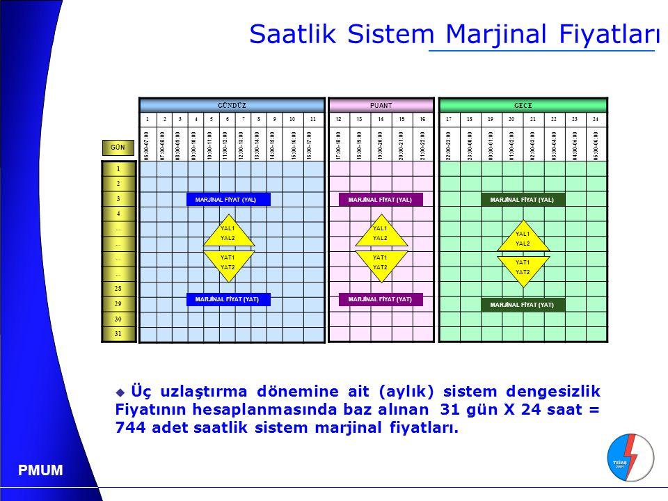 Saatlik Sistem Marjinal Fiyatları